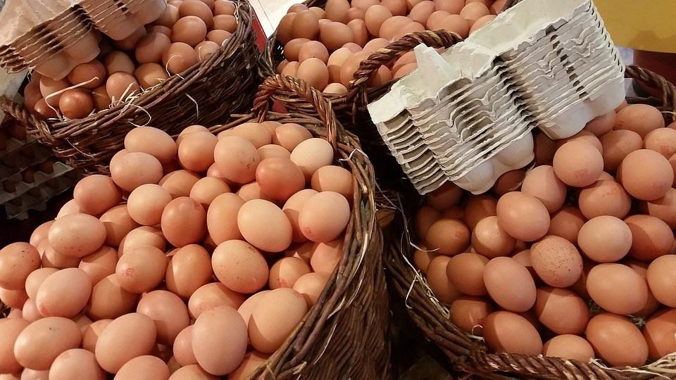 Photos of eggs in several baskets