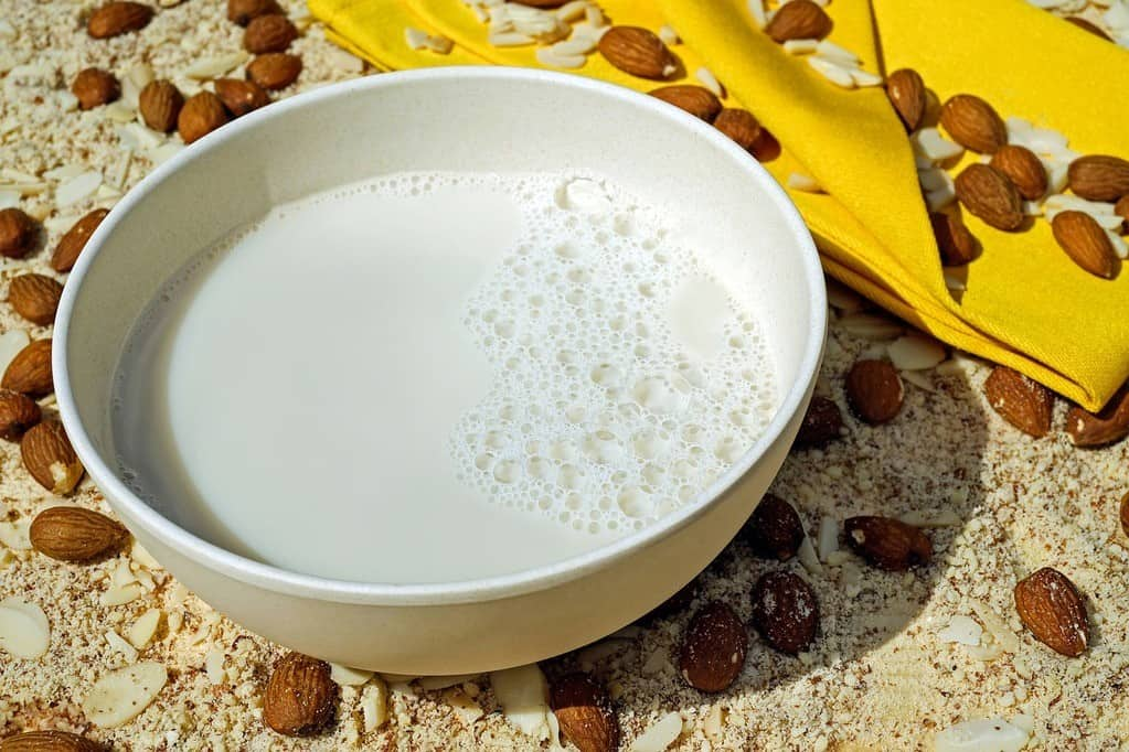 Bowl of homemade almond milk with almonds around it